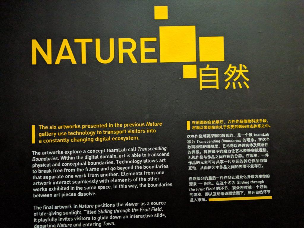 チームラボのFUTURE WORLD 自然ゾーン